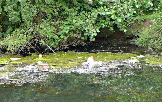 litter on lake sale water park