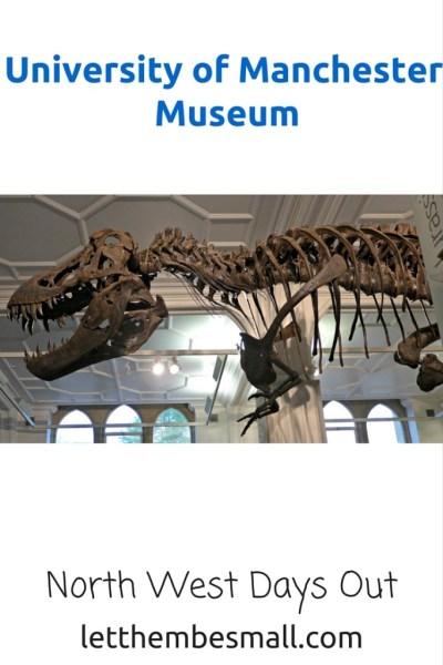 The University of Manchester Museum is fabulous - there are a wealth of exhibits and resources to make this a fabulous day out