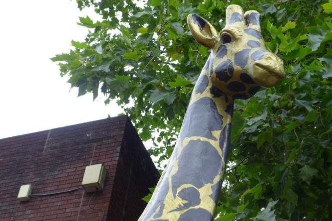 sale art zoo
