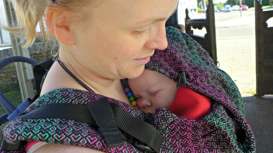 lenny lamb carrier review