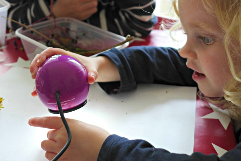 Eploring Nature with children seed dispersal