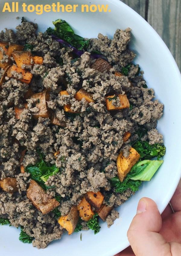 Bison and Kale Salad