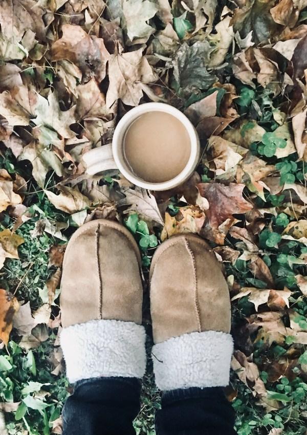 finally fall friday favorites!
