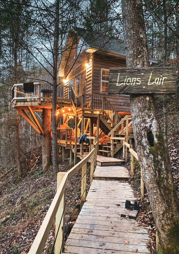 Lion's Lair – Our Stay in a Treehouse!