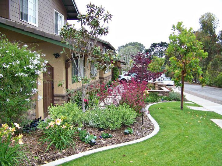 San diego landscape design by letz wallpaper hd designers of plants iphone high resolution