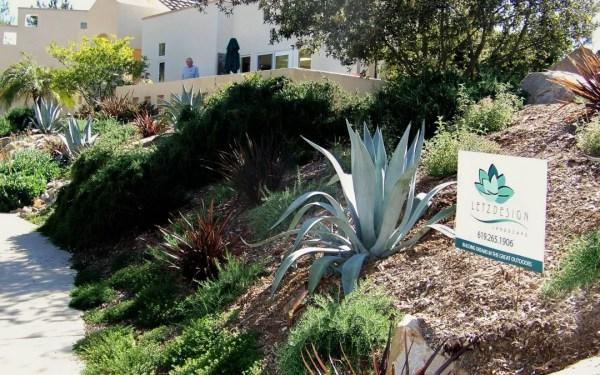 san diego slope planting design