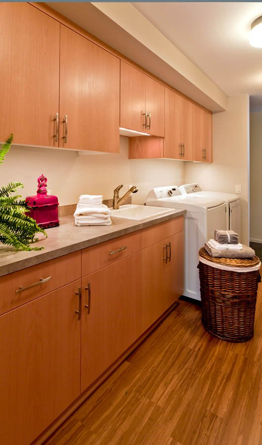 Modern-Transitional laundry station remodel