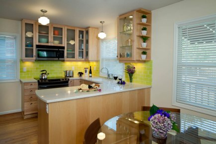 Retro-Transitional dining room idea
