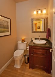 Craftsman-Transitional guest bathroom