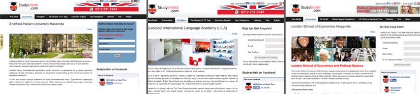 PPC Advertising for International Education