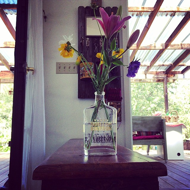 The best use of empty whiskey bottle #pinole #pinolehome #garden #flower