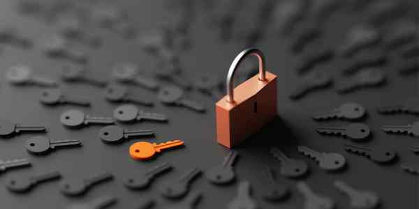 A hundred keys surround the lock, but the orange key is the one that opens it.