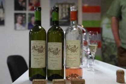 винодельческой отрасли