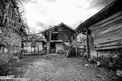 2016yds_sen6230 © LEVENT ŞEN