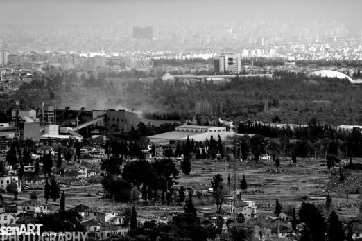 2016yds_sen6825-2 © LEVENT ŞEN