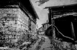 pr2016aaeg_11 © LEVENT ŞEN