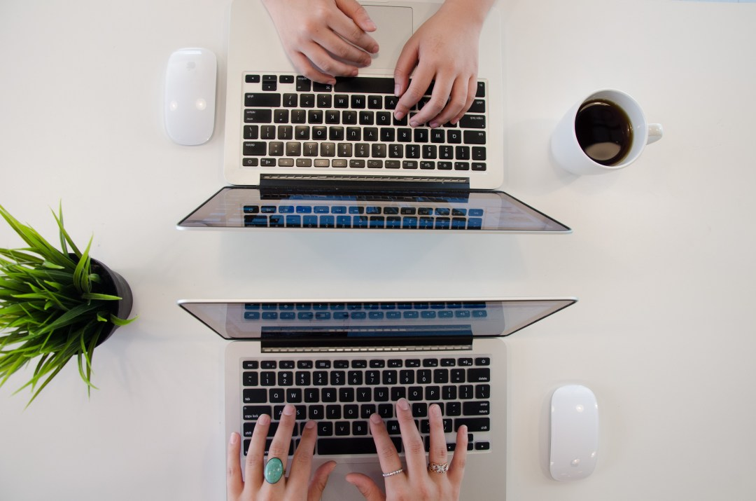 two laptops on desk with plant and coffee
