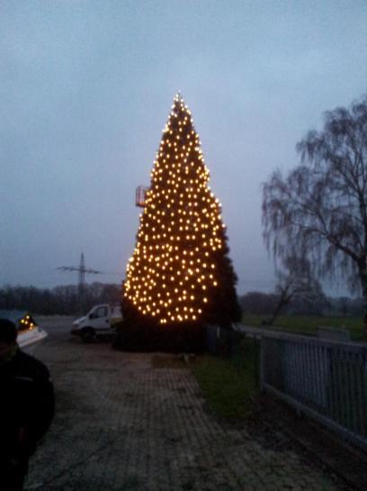 Weihnachtsbaum-Schiffswerft-2014-08
