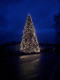 Weihnachtsbaum-Schiffswerft-2014-18
