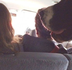 The van ride