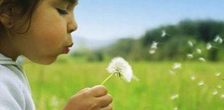 aripi de copil asociatie caritabila