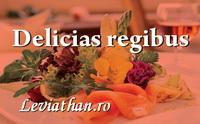 delicias regibus logo rubrica leviathan