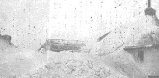 florentina loredana dalian leviathan.ro iarna 1954