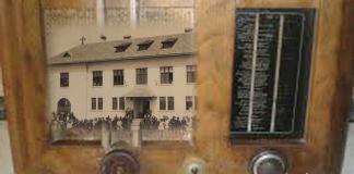 Mirela Nicolae scoala nationala leviathan.ro