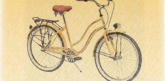 Radu Comsa bicicleta in ploaie rubrica leviathan