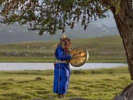 """Urfet Șachir David Baxendale, """"Șaman Tuva efectuând o ceremonie religioasă sub un copac vechi de 800 de anii"""""""