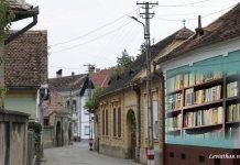 Memor Daniela Șontică săliște leviathan.ro