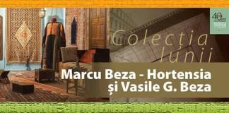 Colectia Marcu Beza