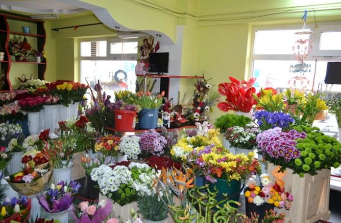 Floraria din centrul vechi florentina loredana dalian proza