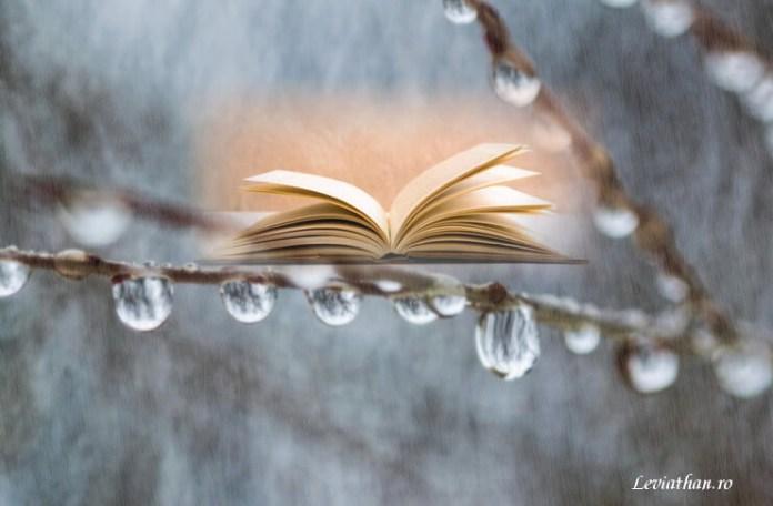Ani Bradea Poveste de iarna proza leviathan.ro