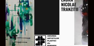 laura nicolae tranziții