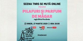 TNRS #online #stațiacasă spectacol online