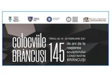 Colocviile Brancusi