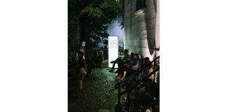 Cinema sub clar de luna_Transilvania Film_1 (1)