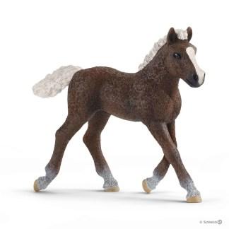 Black Forest Foal (Schleich 13899)   LeVida Toys