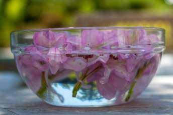 Vackra blommor flytande i en glasskål med vatten. Levins Trädgård & Design.