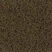 Columbus Carpet Styles, Plush Carpeting, Freize Carpets ...