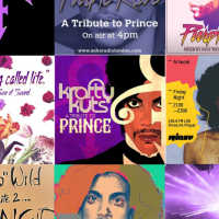Le Visiteur's Top 10 Prince Tribute DJ Mixes Streaming Right Now