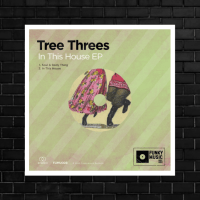 LV Premier - Tree Threes - Soul & Body Thing [Funkymusic Records]