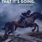 80 Inspiriational Horse Quotes To Motivate You Levo League
