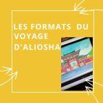 format du livre le voyage d'aliosha