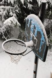 Anche con la neve...