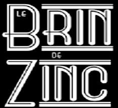 LOGO BRIN DE ZINC