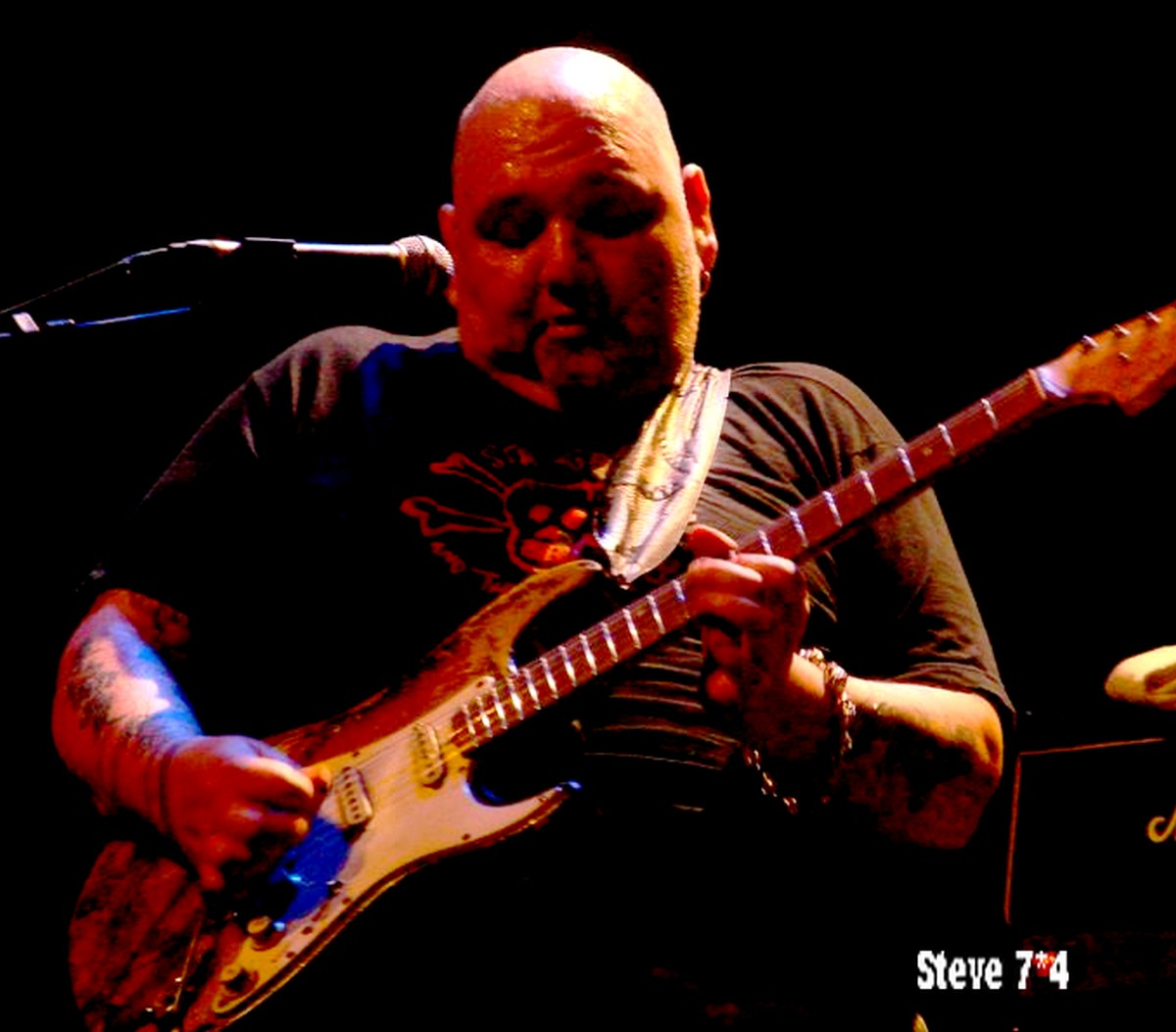 Apologise, Popa chubby live in marseille apologise