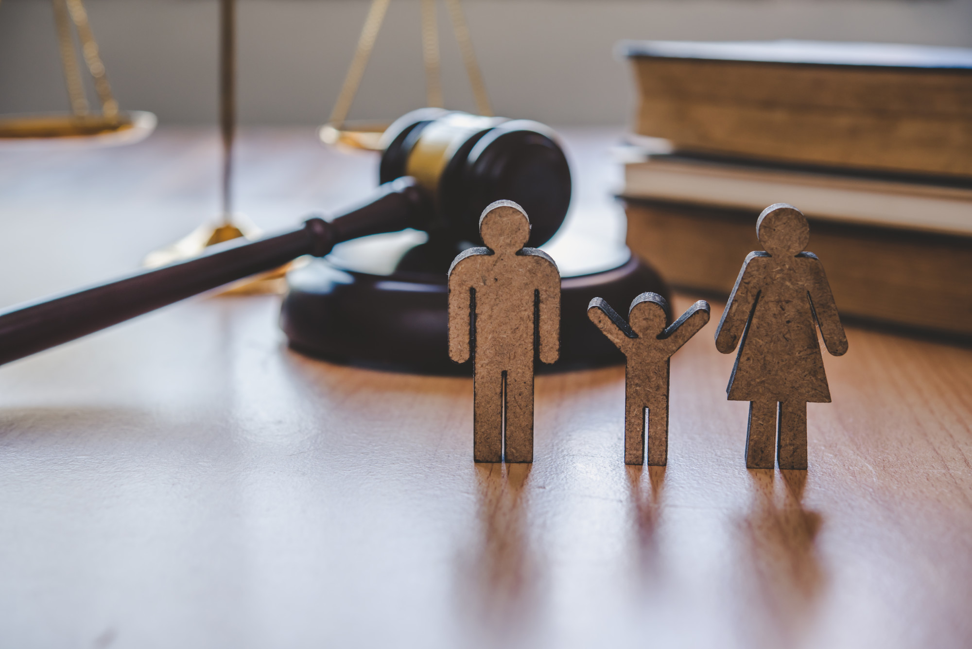 family law legal clinic