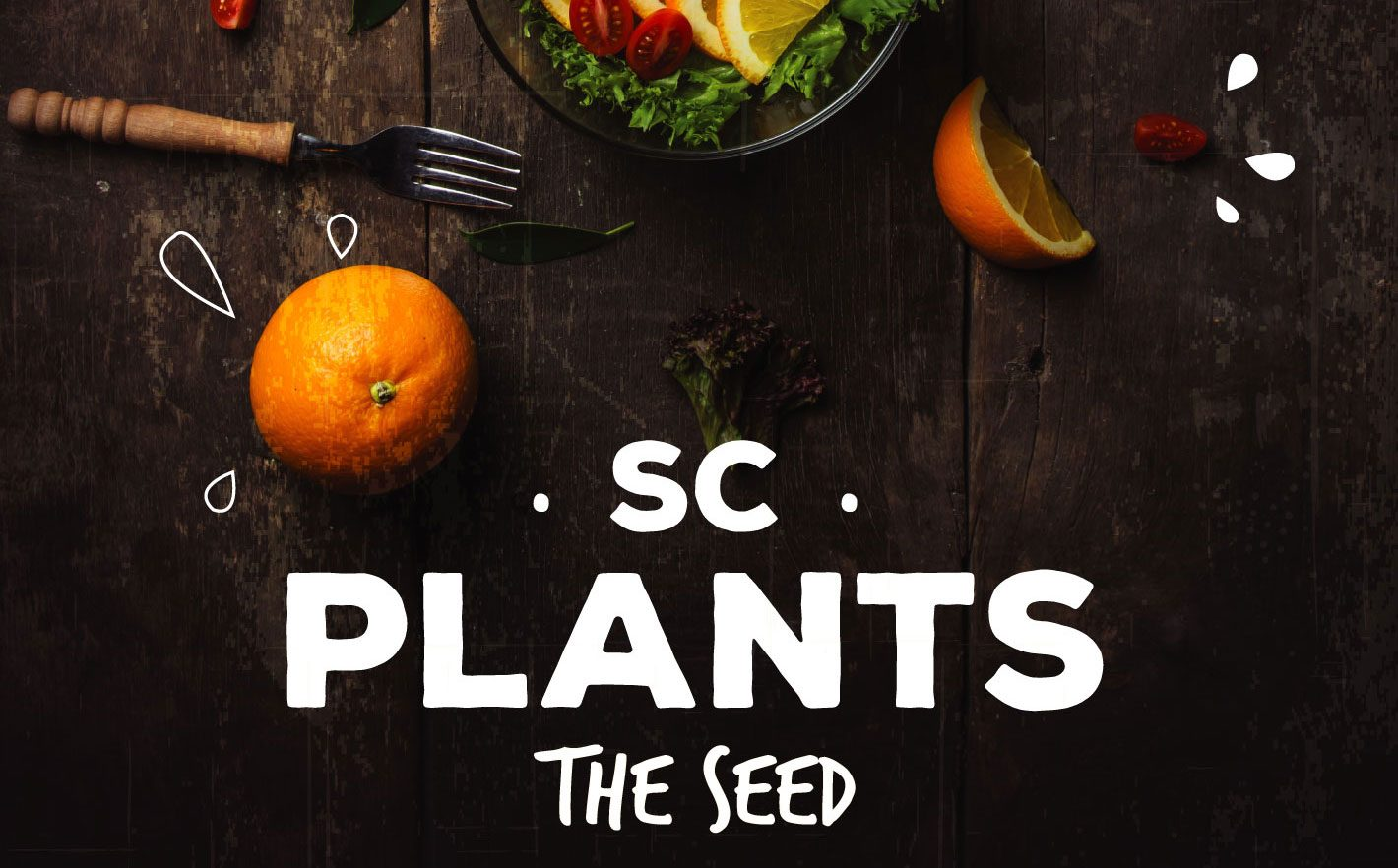 sc-plants-the-seed-final-small